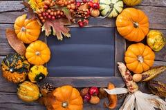 五颜六色的装饰南瓜品种在黑板附近的 免版税库存图片