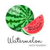五颜六色的西瓜的传染媒介例证 库存图片