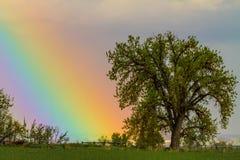 五颜六色的视觉彩虹天空 免版税库存图片