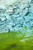 五颜六色的详细资料jiuzhaigou湖省四川 库存照片