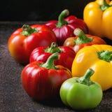 五颜六色的辣椒粉胡椒品种  免版税图库摄影