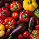 五颜六色的辣椒粉胡椒品种  免版税库存图片