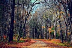 五颜六色的道路 免版税图库摄影