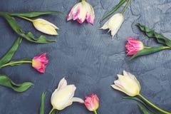 五颜六色的郁金香在舱内甲板位置样式的黑台式视图开花 免版税库存照片