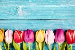 五颜六色的郁金香排列了土气木表面上 库存照片