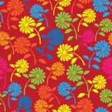 五颜六色的野花无缝的样式 免版税图库摄影