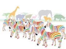 五颜六色的镶边斑马例证 免版税库存照片