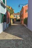 五颜六色的露台的房子、灯和灌木概要在一个胡同在Burano 免版税库存照片