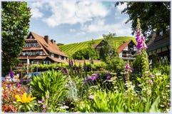 五颜六色的风景在黑森林,德国 免版税图库摄影