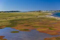 五颜六色的风景盐水湖 免版税库存图片
