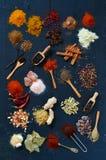 五颜六色的香料和草本 免版税库存照片