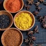 五颜六色的香料粉末,辣椒,胡椒,姜黄,腰果 免版税库存照片