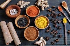 五颜六色的香料粉末,辣椒,胡椒,姜黄,腰果 库存照片