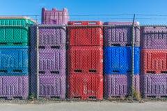五颜六色的鱼容器 免版税库存照片