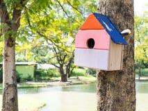 五颜六色的鸟议院在垂悬在树的公园,鸟房子被安置了在各种各样的点 有许多的鸟舍森林 免版税库存图片