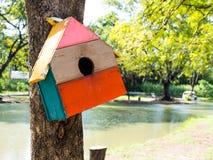 五颜六色的鸟议院在垂悬在树的公园,鸟房子被安置了在各种各样的点 有许多的鸟舍森林brightl 免版税库存照片