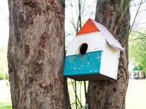 五颜六色的鸟议院在垂悬在树的公园,鸟房子被安置了在各种各样的点 有许多的鸟舍森林brightl 免版税库存图片