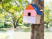五颜六色的鸟议院在垂悬在树的公园,鸟房子被安置了在各种各样的点 鸟舍森林 库存图片