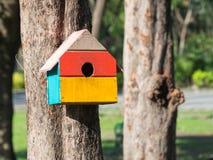 五颜六色的鸟议院在垂悬在树的公园,鸟房子被安置了在各种各样的点 鸟舍森林 免版税库存照片
