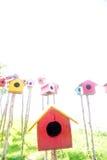 五颜六色的鸟house.in泰国 库存图片