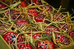 五颜六色的鸡蛋 免版税图库摄影