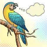 五颜六色的鹦鹉-例证 免版税库存照片