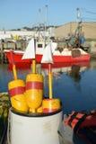 五颜六色的龙虾在桶漂浮 免版税图库摄影