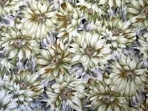 五颜六色的织品纹理 免版税图库摄影