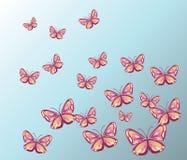 五颜六色的任意蝴蝶背景 库存照片