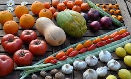 五颜六色的水果和蔬菜行  库存照片