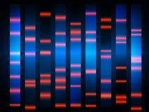 五颜六色的医疗脱氧核糖核酸结果有黑背景 免版税库存照片