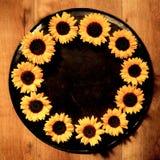 五颜六色的黄色圆的向日葵框架 库存图片