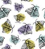 五颜六色的蝴蝶图案传染媒介 皇族释放例证