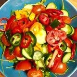 五颜六色的素食主义者沙拉 免版税库存图片