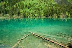 五颜六色的jiuzhaigou池 库存图片
