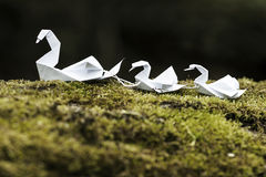 五颜六色的Origami天鹅 库存图片