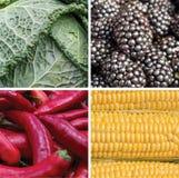 五颜六色的vegeable肥料拼贴画:红色,绿色,黄色, b 库存照片