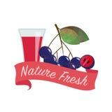 五颜六色的waterolor自然orgaic新鲜水果汁banner_86 bla 免版税图库摄影