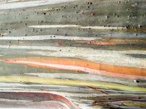 五颜六色皮肤木地球口气背景 免版税库存图片
