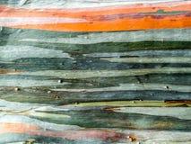 五颜六色皮肤木地球口气水平线 库存照片