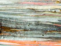 五颜六色皮肤木地球口气水平线 免版税库存照片