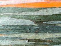 五颜六色皮肤木地球口气水平线 图库摄影