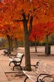 五颜六色秋天的机盖 免版税库存图片