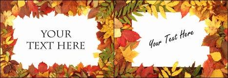 五颜六色秋天的背景 免版税库存照片
