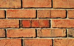 五颜六色背景的brickwall 免版税库存照片