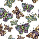 五颜六色蝴蝶的收藏 免版税图库摄影