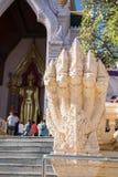 五头纳卡人蛇,泰国 库存照片