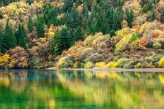 五Flower湖在九寨沟风景名胜区 库存图片