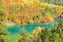 五Flower湖鸟瞰图秋天日出时间的 免版税图库摄影