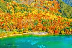 五Flower湖鸟瞰图秋天日出时间的 免版税库存照片